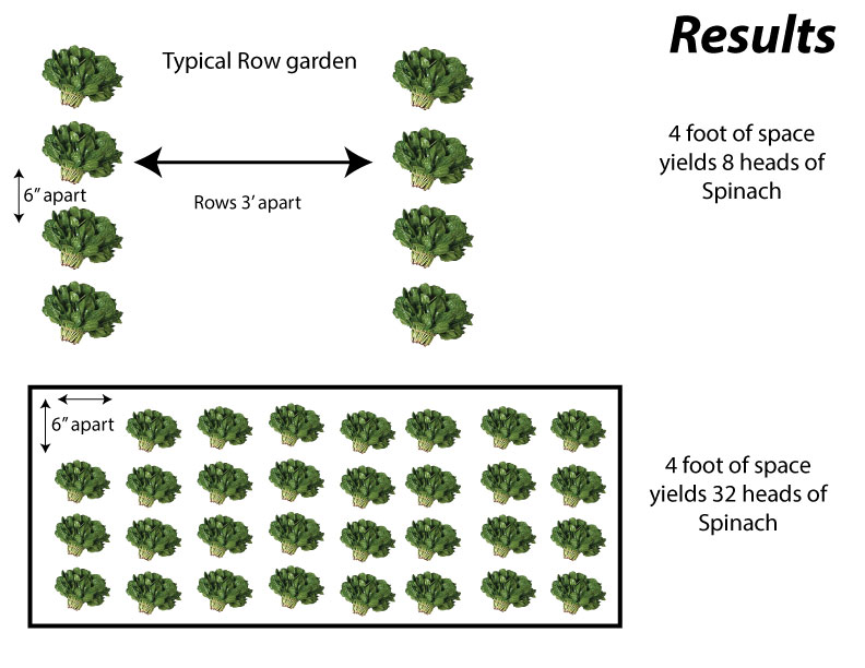 row-vs-EZ-gardens
