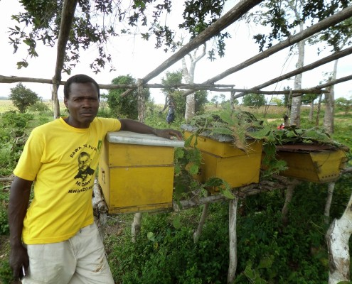 Tsuma posing with his box beehives.